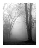 November Fog Poster by Nicholas Bell