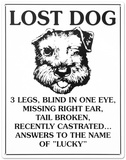 Lost Dog Tin Sign Tin Sign