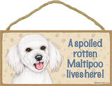 A Spoiled Rotten Maltipoo Lives Here! Wood Sign Wood Sign