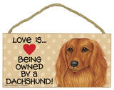 Love Is… Being Owned By A Dachshund (Long Hair) Wood Sign Wood Sign