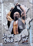 Stone Cold Tin Sign Tin Sign