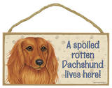 A Spoiled Rotten Dachshund (Long Hair) Lives Here! Wood Sign Wood Sign