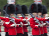 UK, England, London, Changing of the Guard Photographic Print by Steve Vidler