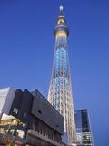 Japan, Honshu, Kanto, Tokyo, Asakusa, Skytree Tower Photographie par Steve Vidler