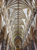 England, Lincolnshire, Lincoln, Lincoln Cathedral Photographic Print by Steve Vidler