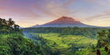Michele Falzone - Indonesia, Bali, Redang, View of Rice Terraces and Gunung Agung Volcano Fotografická reprodukce
