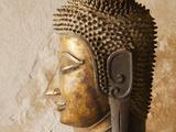 Laos, Vientiane, Wat Sisaket, Buddha Statues Photographic Print by Steve Vidler