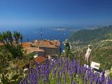 Jardin Exotique in Eze, Cote D´Azur, Alpes-Maritimes, Provence-Alpes-Cote D'Azur, France Photographic Print by Katja Kreder