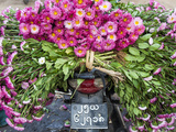Flowers on Back of Motorcycle, Market, Mandalay, Myanmar (Burma) Photographie par Peter Adams
