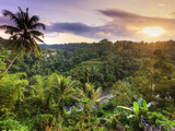 Indonesia, Bali, Ubud, Sayan Valley and Ayung River Photographic Print by Michele Falzone