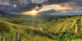 Indonesia, Bali, Jatiluwih Rice Terraces Photographic Print by Michele Falzone