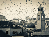 Croatia, Dalmatia, Dubrovnik, Old Town (Stari Grad), Clock Tower Surrounded by Birds Photographic Print by Alan Copson