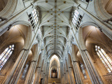 England, Yorkshire, York, York Minster, the Nave Photographic Print by Steve Vidler