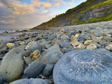 Lyme Regis, a Gateway Town To UNESCO World Heritage Site of Jurassic Coast, Large Ammonite Fossil Photographic Print by Alan Copson