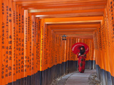 Japan, Kyoto, Fushimi Inari Taisha Shrine, Tunnel of Torii Gates Photographic Print by Steve Vidler