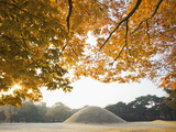 South Korea, Gyeongju, Royal Tomb of King Naemul of Silla Photographic Print by Steve Vidler