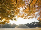 South Korea, Gyeongju, Royal Tomb of King Naemul of Silla Photographic Print by Steve Vidler