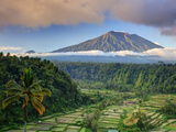 Indonesia, Bali, Rendang Rice Terraces and Gunung Agung Volcano Photographic Print by Michele Falzone
