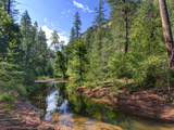USA, Arizona, Sedona, Oak Creek Canyon, West Fork Trail Photographic Print by Michele Falzone
