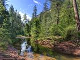 USA, Arizona, Sedona, Oak Creek Canyon, West Fork Trail Photographic Print by Michele Falzone