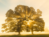 Sunrise, Usk Valley, South Wales, UK Photographic Print by Peter Adams