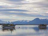 Chile, Magallanes Region, Puerto Natales, Tour Boats on Seno Ultima Esperanza Bay Photographic Print by Walter Bibikow