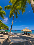 Caribbean, St Lucia, Soufriere, Anse Chastanet, Anse Chastanet Beach Fotografisk tryk af Alan Copson