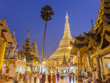 The Great Golden Stupa, Shwedagon Paya (Shwe Dagon Pagoda), Yangon (Rangoon), Myanmar (Burma) Fotodruck von Peter Adams