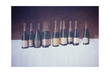 Winescape, Champagne, 2003 Giclee Print by Lincoln Seligman