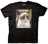 Grumpy Cat - I Had Fun Once T-shirts