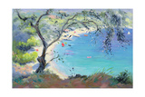 Lichnos Bay, Epirus, Greece, 1995 Giclee Print by Anne Durham