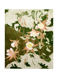Columbines Giclee Print by Valerie Daniel