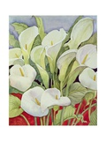 Arum Lillies, 1978 Giclee Print by Lillian Delevoryas