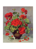 Geranium in an Earthenware Vase Giclee Print by Albert Williams
