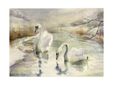 Swans in Winter Giclee Print by Karen Armitage