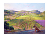 Watching from the Walls, Old Provence, 1993 Giclee Print by Timothy Easton