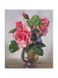 Lady Sylvia Roses in a Silver Vase Giclee Print by Albert Williams