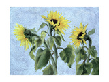 Sunflowers, 1996 Giclee Print by Cristiana Angelini