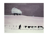 Cows in a Snowstorm Giclee Print by Maggie Rowe