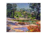 Wirreanda Creek, New South Wales, Australia Giclee Print by Robert Tyndall