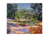 Wirreanda Creek, New South Wales, Australia Giclee Print by Robert Tyndall