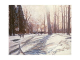 Snow at Broadlands Giclee Print by Paul Stewart