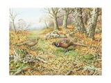 Pheasants with Blue Tits Giclee Print by Carl Donner