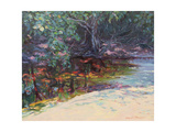 Beach and Rain Forest, Cape Tribulation, Northern Queensland, Australia Giclee Print by Robert Tyndall