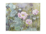Pink Poppies with Bees Giclee Print by Rosalie Bullock