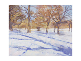 Winter, Richmond Park Giclee Print by Christopher Glanville
