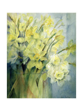 Daffodils, Uncle Remis and Ice Follies Giclee Print by Karen Armitage