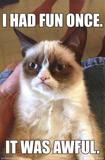 Grumpy Cat - Fun Poster