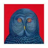 Blue Owl, 1995 Giclee Print by Tamas Galambos