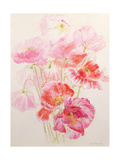 Shirley Poppies Giclee Print by Joan Thewsey